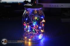 fireflies_pot_10