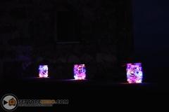 fireflies_pot_12